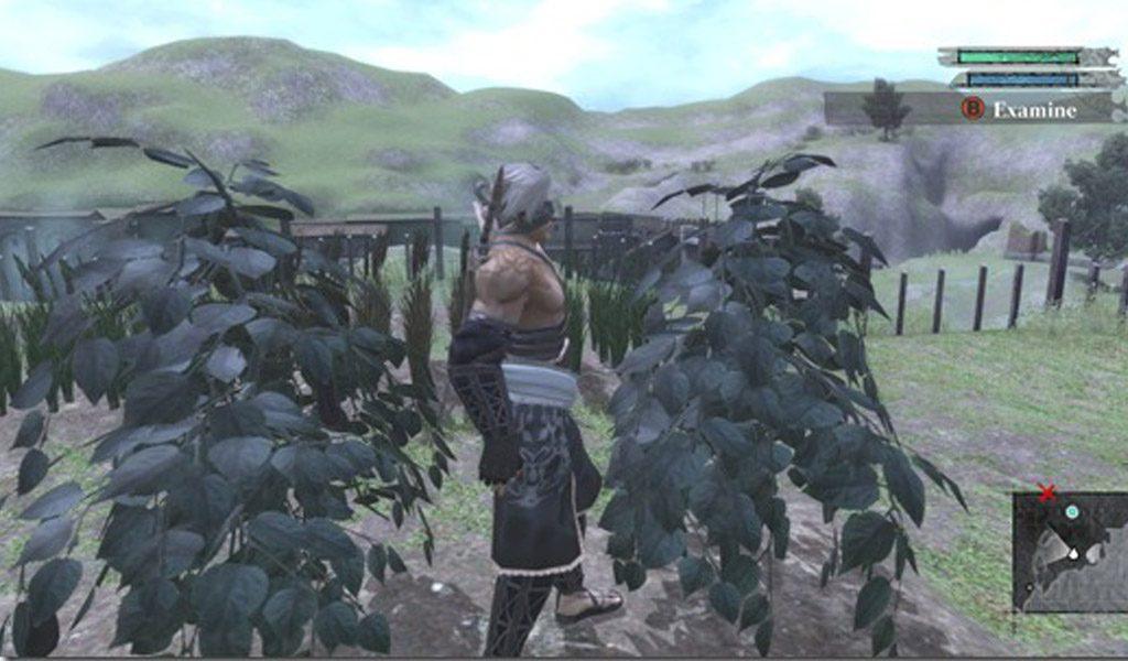 Nier Harvest of Garden
